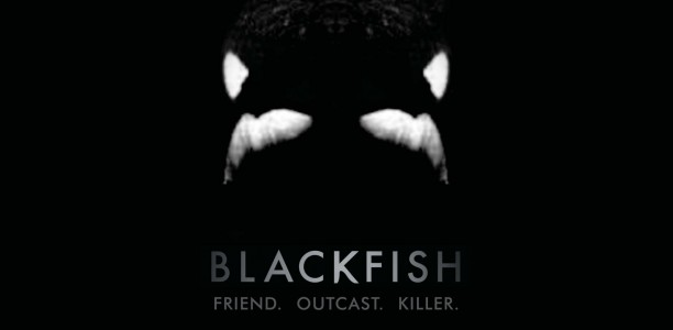 the purpose of investigative journalism in blackfish a documentary film by gabriela cowperthwaite Gabriela cowperthwaite is a documentary filmmaker who for more than 12 years has directed, produced and written documentary programs for television networks including espn, national geographic, animal planet, discovery, and the history channel.